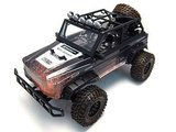 RC auto off the road truck Sunny 1:8  45cm 2.4GHz RTR