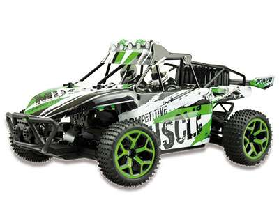 RC Auto dune Sand buggy extreme D5 1:18  4WD  RTR groen3